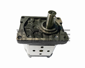 CBTt-F300系列齿轮泵