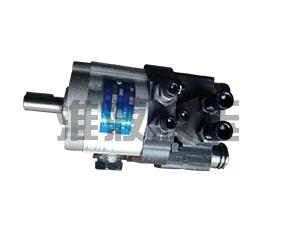 江苏CBS-D300系列双向液压推杆齿轮泵